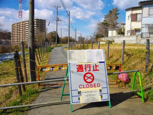 Radiation_hotspot_in_Kashiwa_02