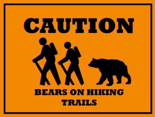 Bear hike 500w file4271283961107