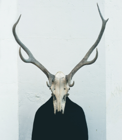 ANTLERS SUIT