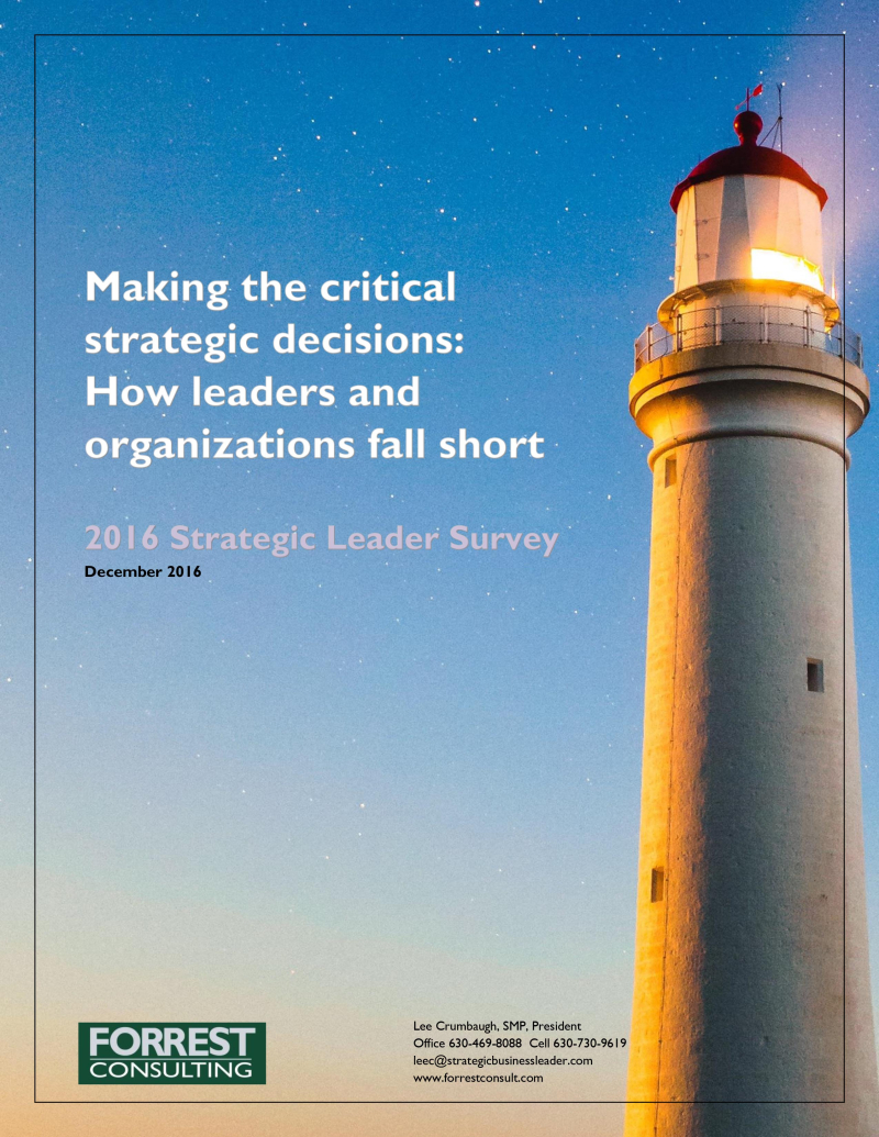 2016 Strategic Leader Survey Report cover 12-1-2016 1.0-1