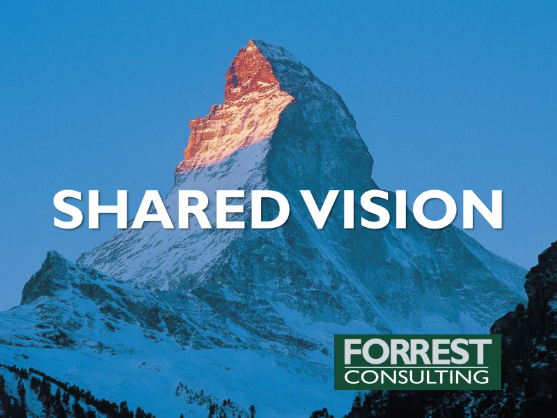 Developing a shared vision